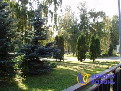 Некоторым деревьям сада более 100 лет