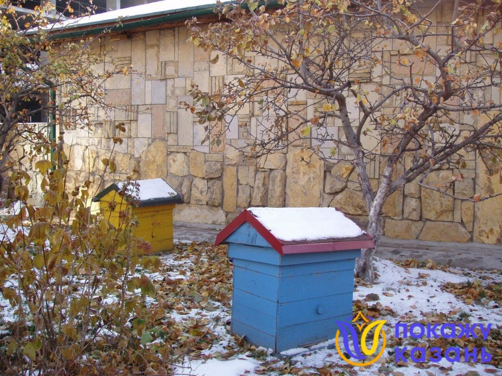 Разноцветные домики-ульи стоят на газоне. Они покрашены в желтый, синий, красный, зеленый цвета, они яркие и веселые.